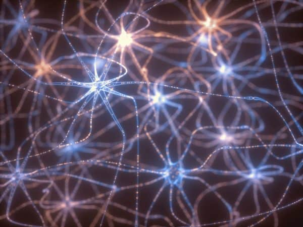 Neurons Electrical Pulses